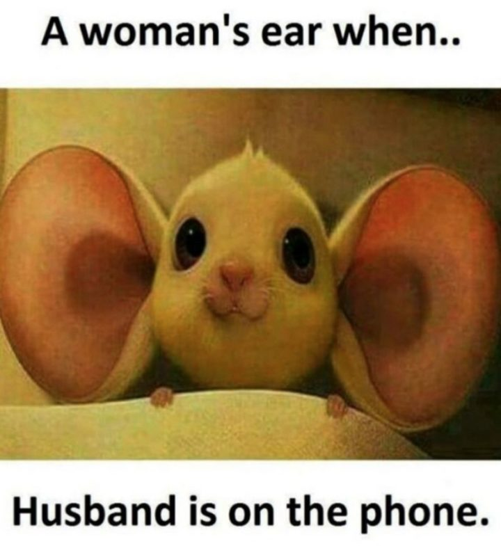 "49 Marriage Memes - ""A woman's ear when...Husband is on the phone."""
