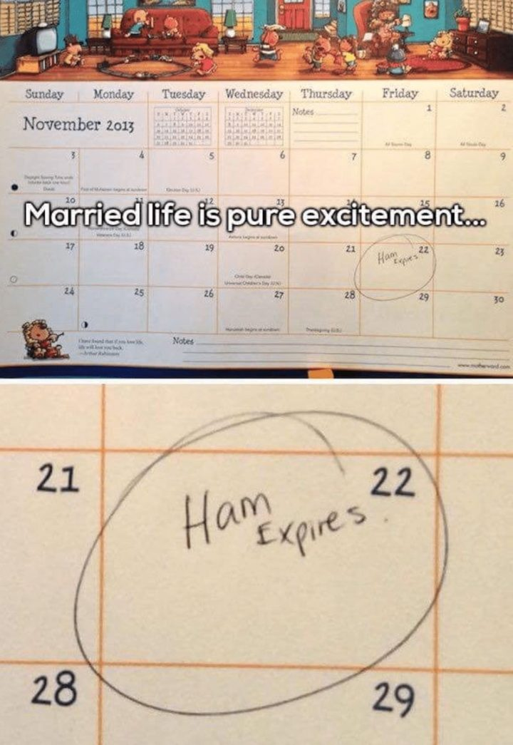 "49 Marriage Memes - ""Married life is pure excitement...Ham expires on the 22nd."""