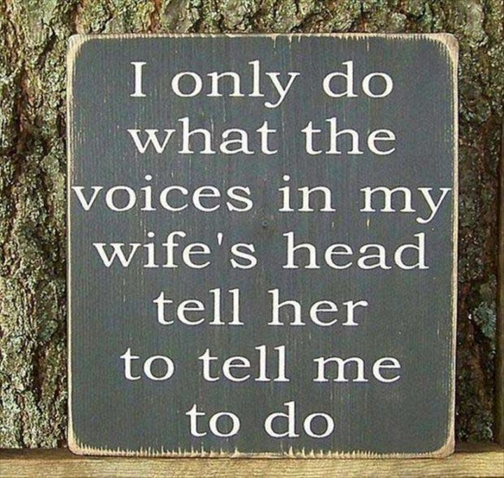 "49 Marriage Memes - ""I only do what the voices in my wife's head tell her to tell me to do."""