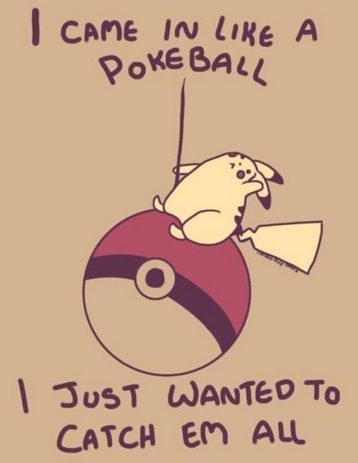 "30 Hilarious Pokémon Go Memes Only Pokemon Go Players Understand - ""I came in like a Poke Ball, I just wanted to catch 'em all."""