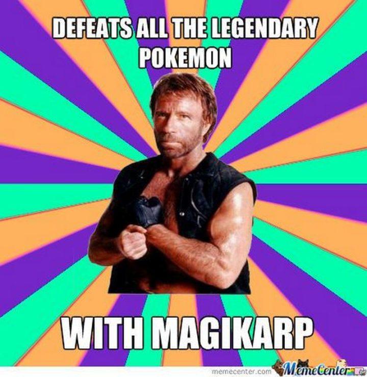 "71 Pokémon memes - ""Defeats all the legendary pokémon with Magikarp."""