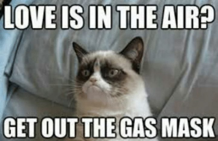 "71 Relationship Quotes - ""Love is in the air? Get out the gas mask."""