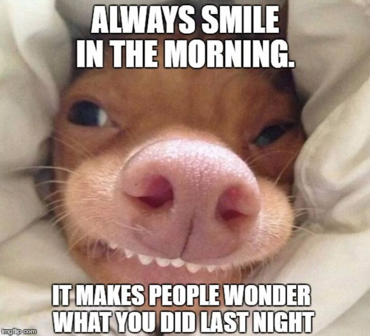 "101 Funny Good Morning Memes - ""Always smile in the morning. It makes people wonder what you did last night."""