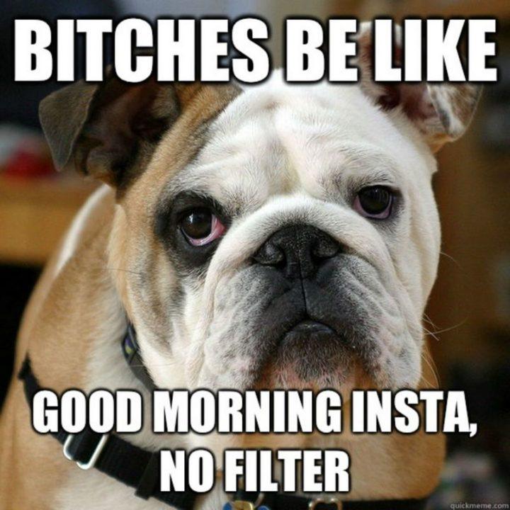 "101 Funny Good Morning Memes - ""B***hes be like good morning Insta, no filter."""