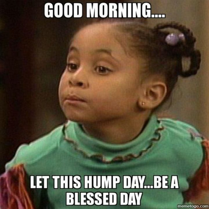 "101 Funny Good Morning Memes - ""Good morning...Let this hump day...Be a blessed day."""