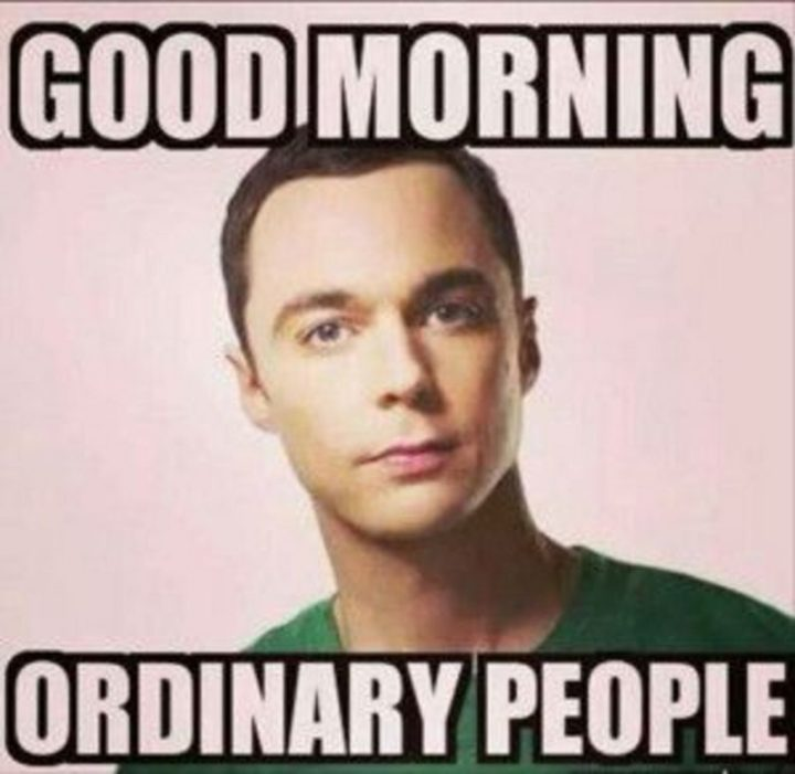 "101 Funny Good Morning Memes - ""Good morning ordinary people."""