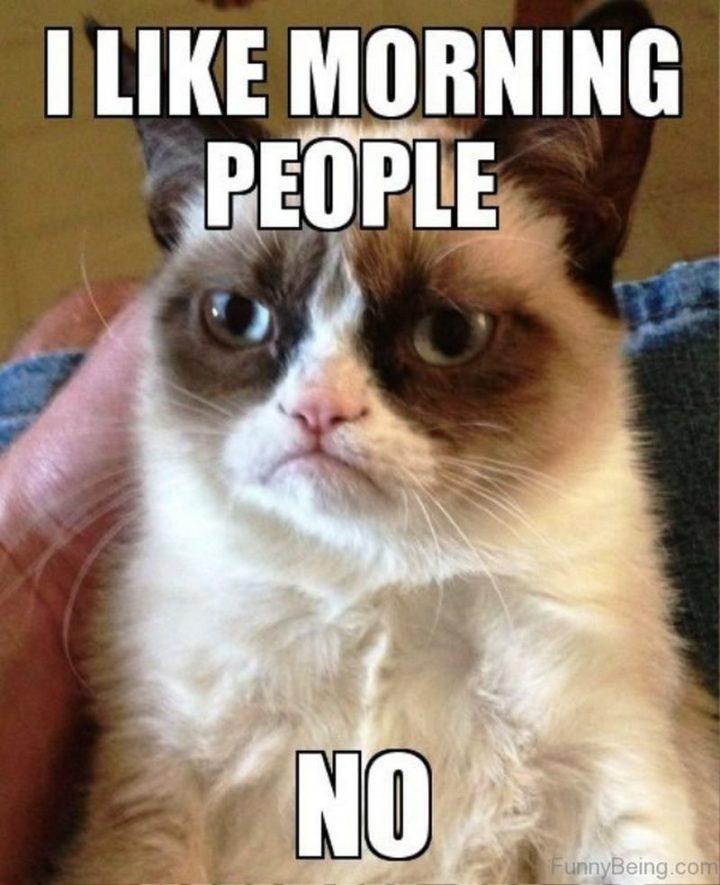 "101 Funny Good Morning Memes - ""I like morning people. No."""