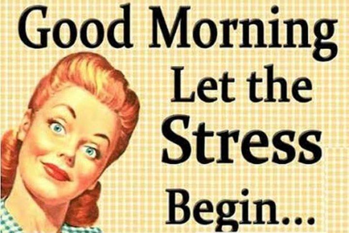 "101 Funny Good Morning Memes - ""Good morning. Let the stress begin..."""