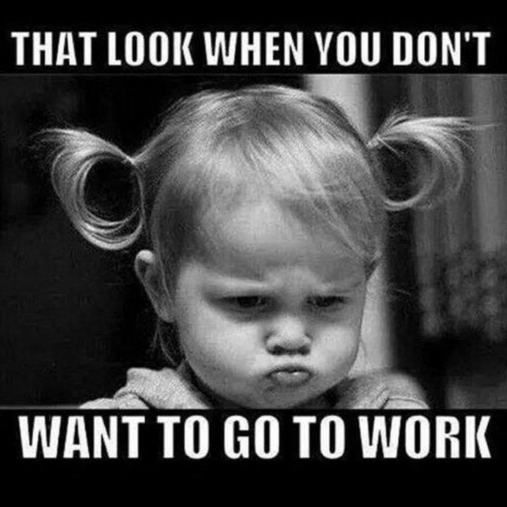 "101 Funny Good Morning Memes - ""That look when you don't want to go to work."""