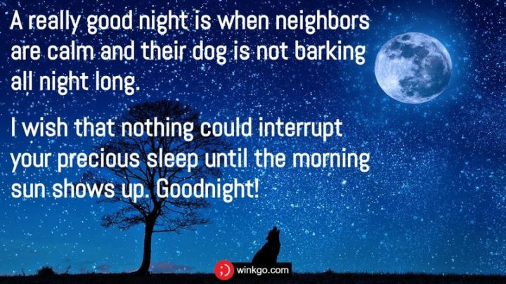 """""""A really good night is when neighbors are calm and their dog is not barking all night long. I wish that nothing could interrupt your precious sleep until the morning sun shows up. Goodnight!"""""""