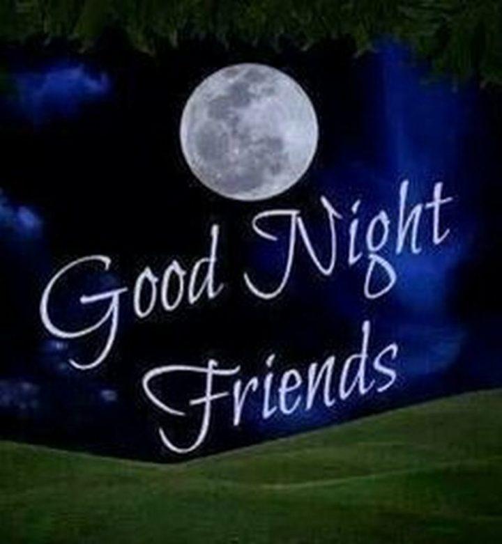 """Good night friends."""