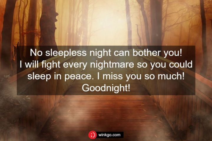 """""""No sleepless night can bother you! I will fight every nightmare so you could sleep in peace. I miss you so much! Goodnight!"""""""