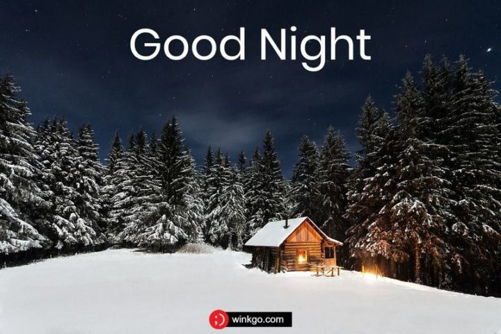 """Good night."""