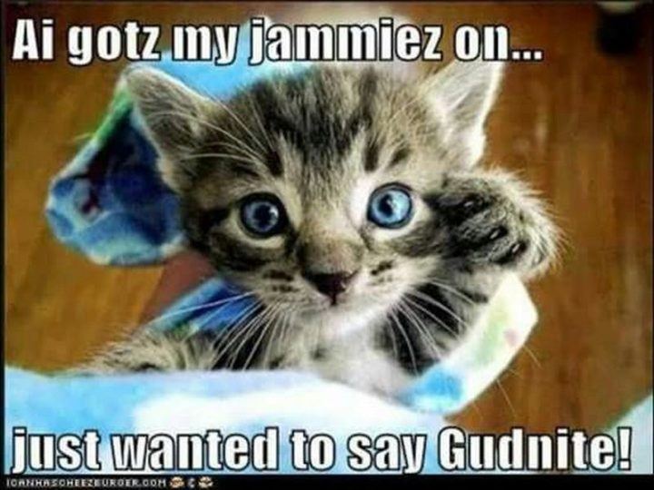 "101 Good Night Memes - ""Ai gotz my jammiez on...just wanted to say gudnite!"""