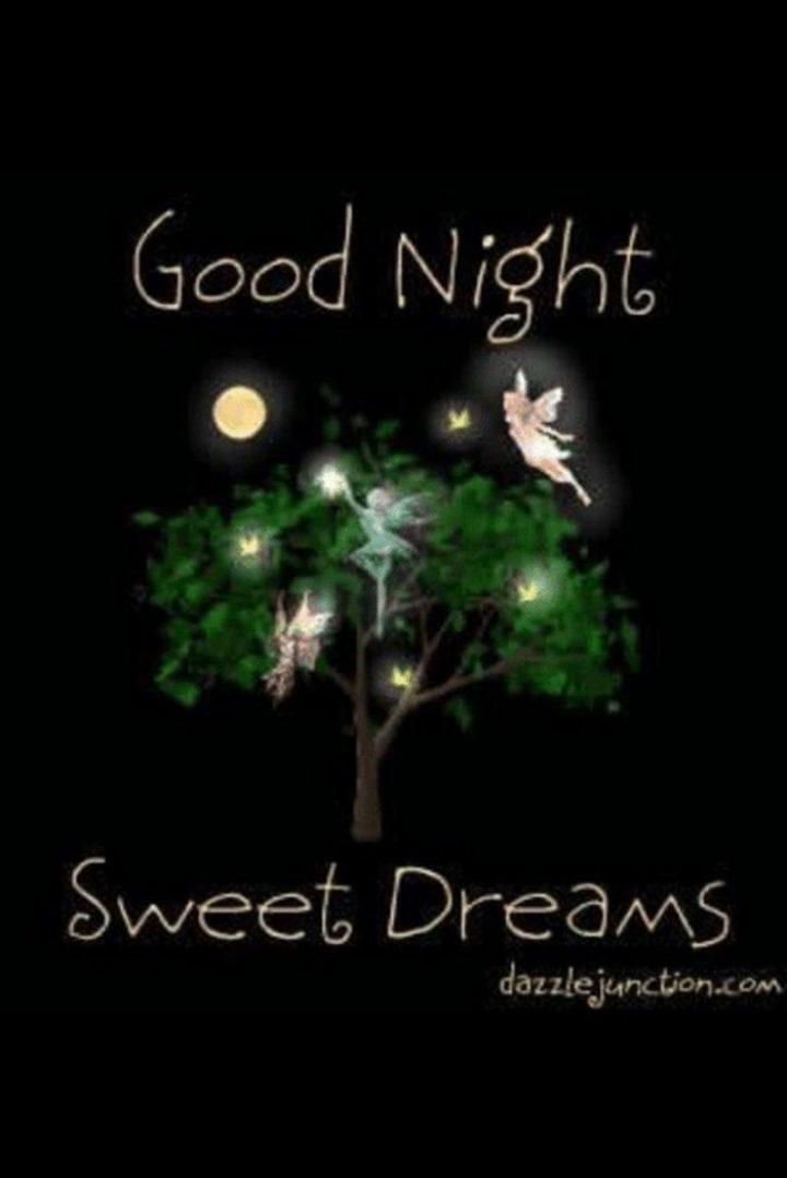 """101 Good Night Memes - """"Good night, sweet dreams."""""""