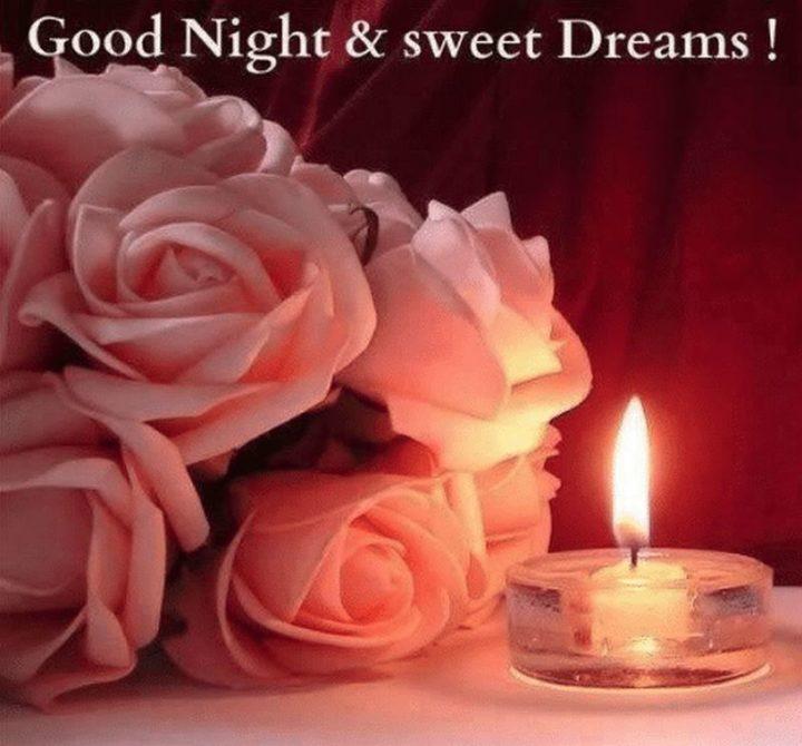 "101 Good Night Memes - ""Good night and sweet dreams!"""
