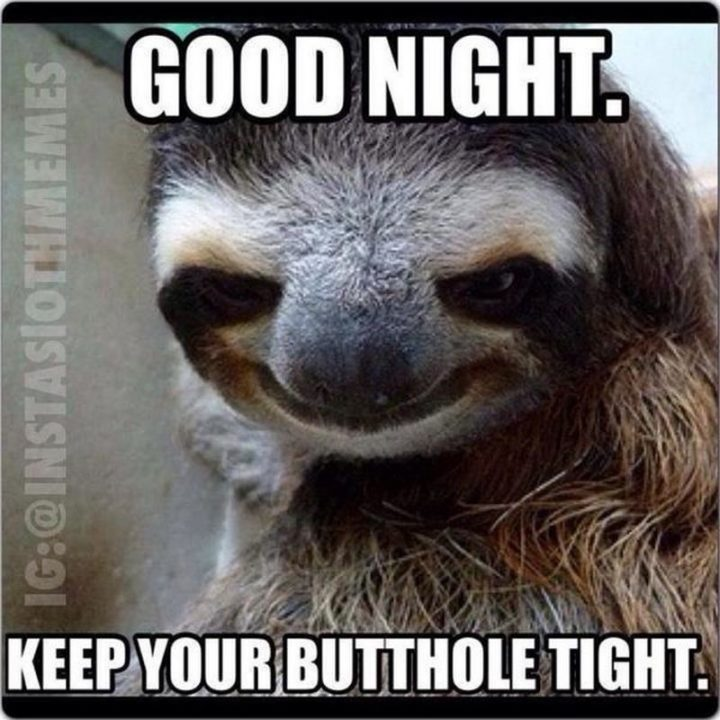 "101 Good Night Memes - ""Good night. Keep your butthole tight."""