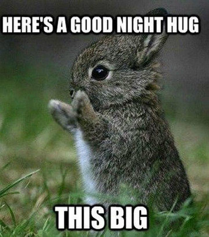 "101 Good Night Memes - ""Here's a good night hug this big."""