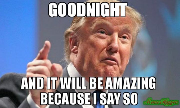 "101 Good Night Memes - ""Goodnight and it will be amazing because I say so."""