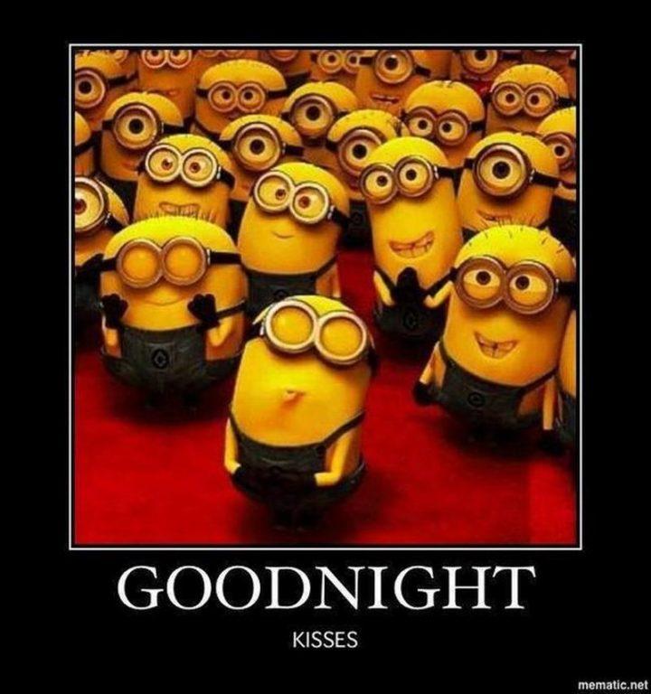 "101 Good Night Memes - ""Goodnight kisses."""