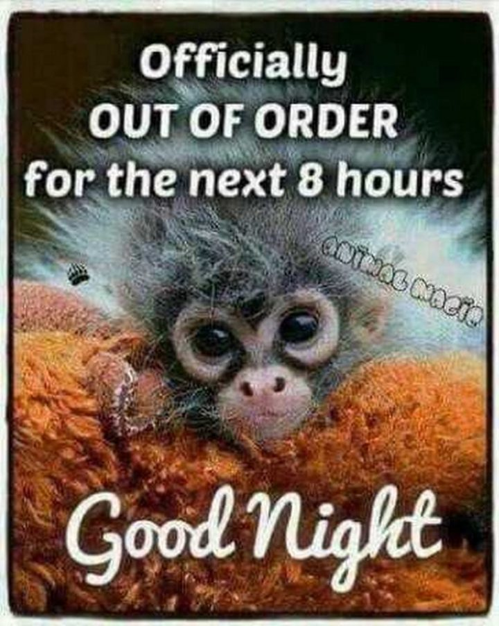 "101 Good Night Memes - ""Officially OUT OF ORDER for the next 8 hours. Good night."""