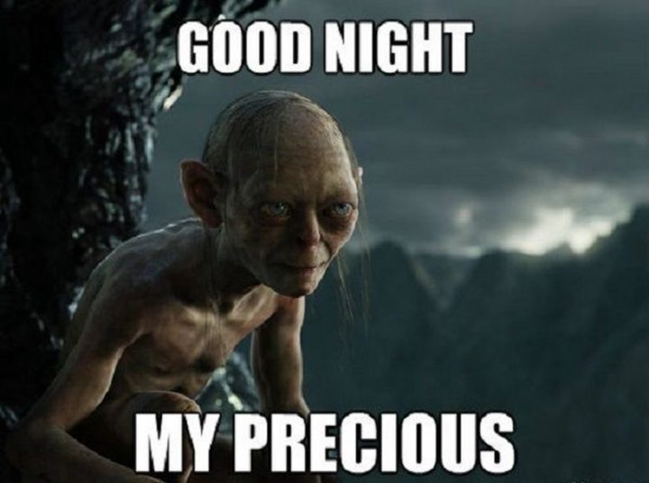 "101 Good Night Memes - ""Good night my precious."""