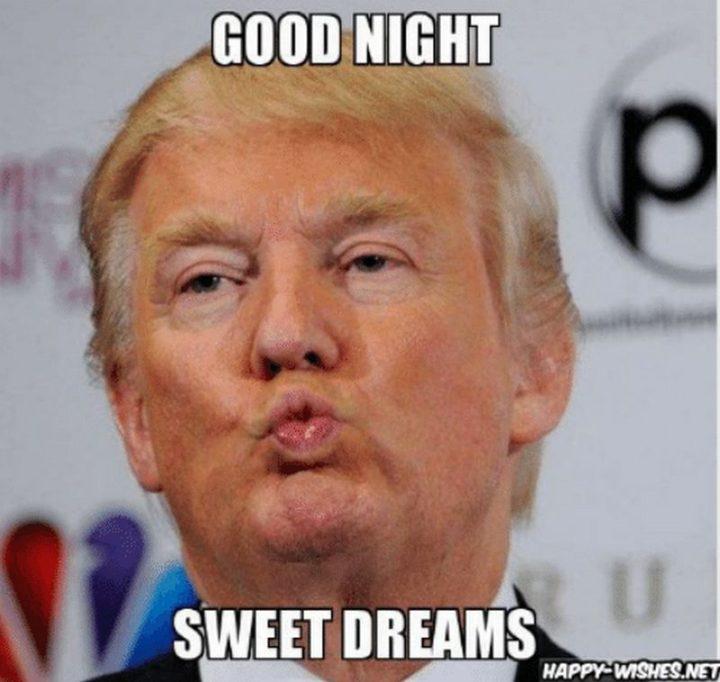 """101 Good Night Memes - """"Good night. Sweet dreams."""""""