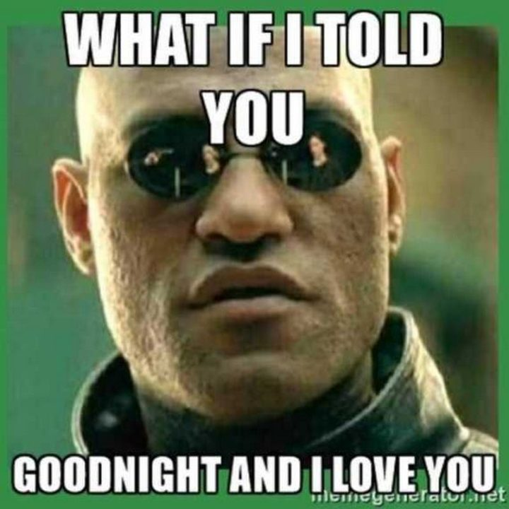"101 Good Night Memes - ""What if I told you goodnight and I love you."""