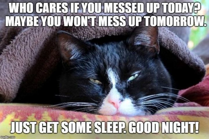 "101 Good Night Memes - ""Who cares if you messed up today? Maybe you won't mess up tomorrow. Just get some sleep. Good night!"""