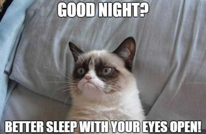 "101 Good Night Memes - ""Good night? Better sleep with your eyes open!"""