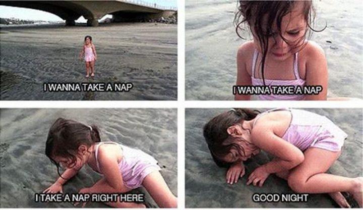"101 Good Night Memes - ""I wanna take a nap. I wanna take a nap. I take a nap right here. Good night."""