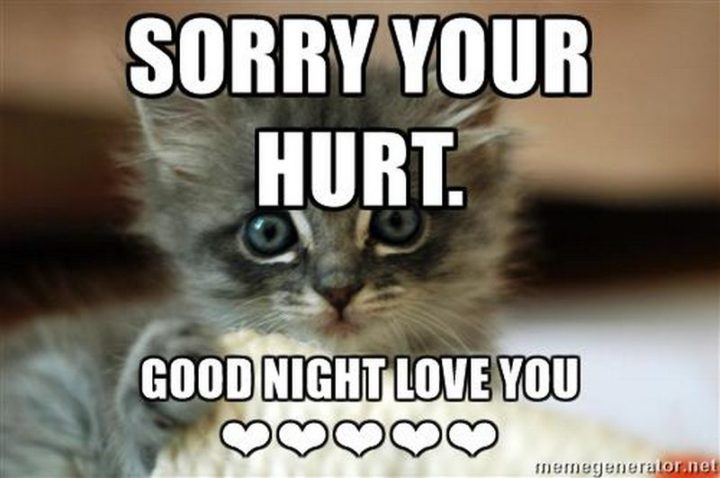 "101 Good Night Memes - ""Sorry your hurt. Good night love you."""