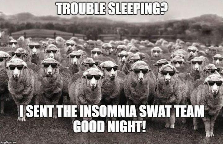 "101 Good Night Memes - ""Trouble sleeping? I sent the insomnia swat team. Good night!"""