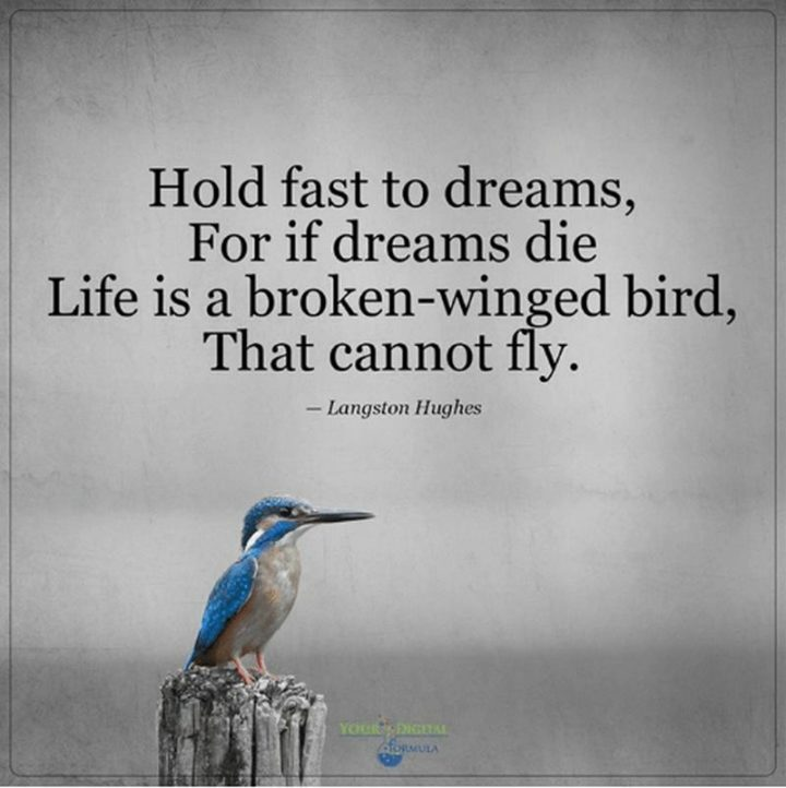 """39 Hope Quotes - """"Hold fast to dreams, For if dreams die, Life is a broken-winged bird, That cannot fly."""" - Langston Hughes"""