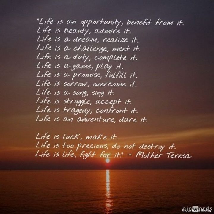 "61 Life Quotes with Beautiful Images - ""Life is an opportunity, benefit from it. Life is a beauty, admire it. Life is a dream, realize it. Life is a challenge, meet it. Life is a duty, complete it. Life is a game, play it. Life is a promise, fulfill it. Life is sorrow, overcome it. Life is a song, sing it. Life is struggle, accept it. Life is tragedy, confront it. Life is an adventure, dare it. Life is luck, make it. Life is too precious, do not destroy it. Life is life, fight for it."" - Mother Teresa"
