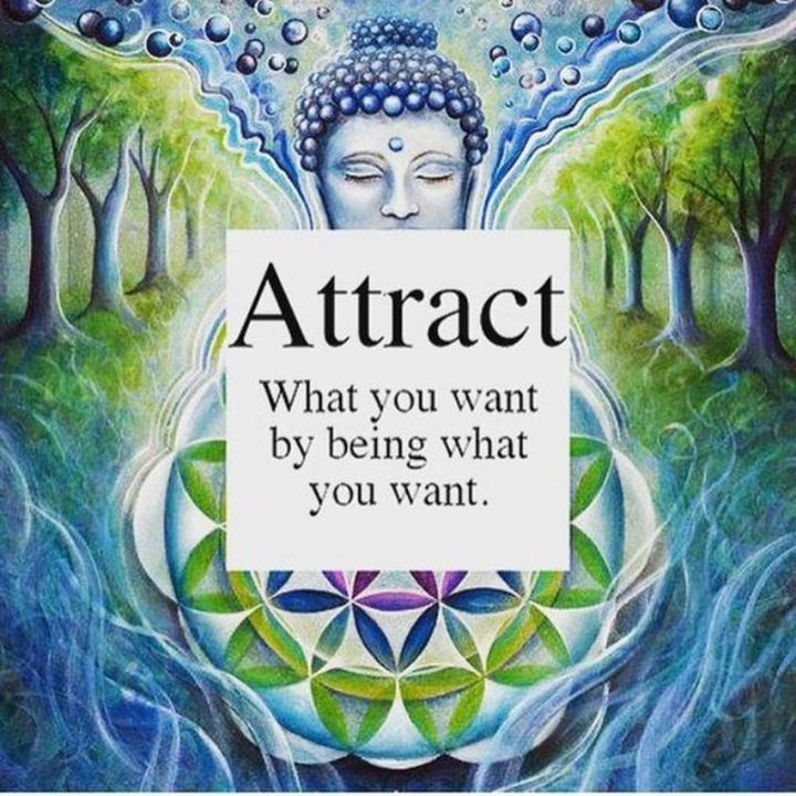 "59 Positive Memes - ""Attract what you want by being what you want."""