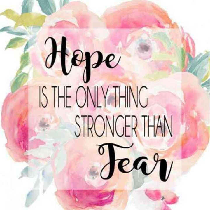 "59 Positive Memes - ""Hope is the only thing stronger than fear."""