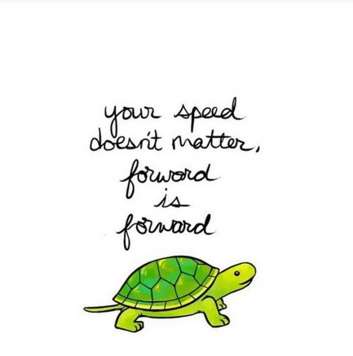 "59 Positive Memes - ""Your speed doesn't matter, forward is forward."""