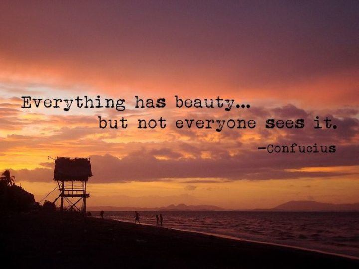 "75 Short Quotes - ""Everything has beauty, but not everyone sees it."" - Confucius"