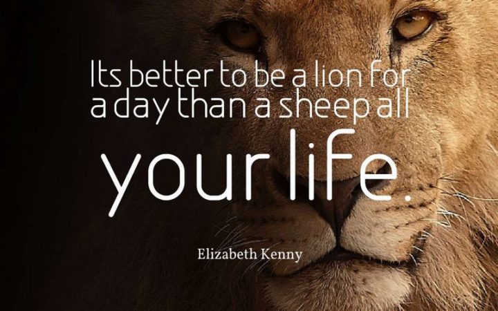 "75 Short Quotes - ""It's better to be a lion for a day than a sheep all your life."" - Elizabeth Kenny"