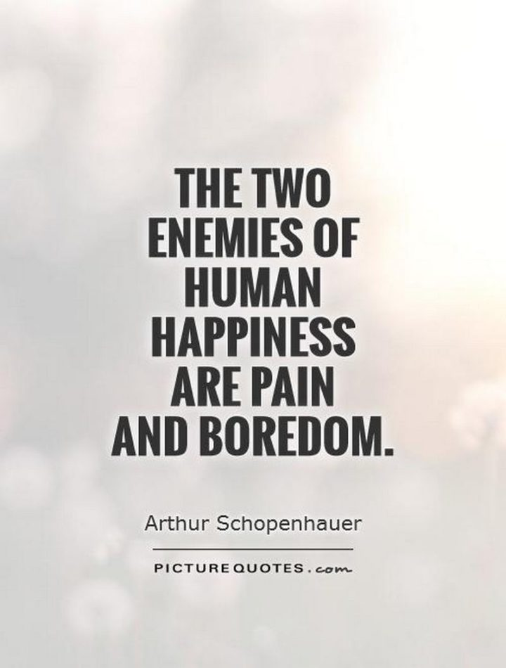 "75 Short Quotes - ""The two enemies of human happiness are pain and boredom."" - Arthur Schopenhauer"