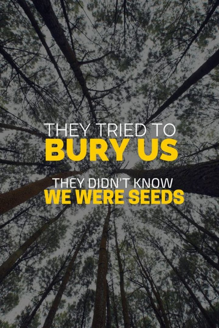 "75 Short Quotes - ""They tried to bury us, they didn't know we were seeds."" - Unknown"