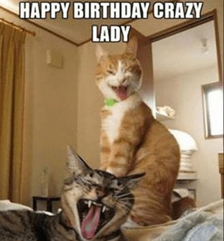 "91 Sister Birthday Memes - ""Happy birthday crazy lady."""