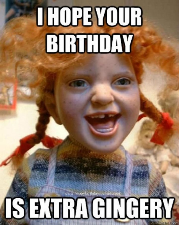 "91 Sister Birthday Memes - ""I hope your birthday is extra gingery."""