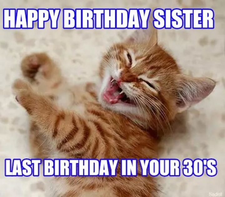 "91 Sister Birthday Memes - ""Happy birthday sister. Last birthday in your 30's."""