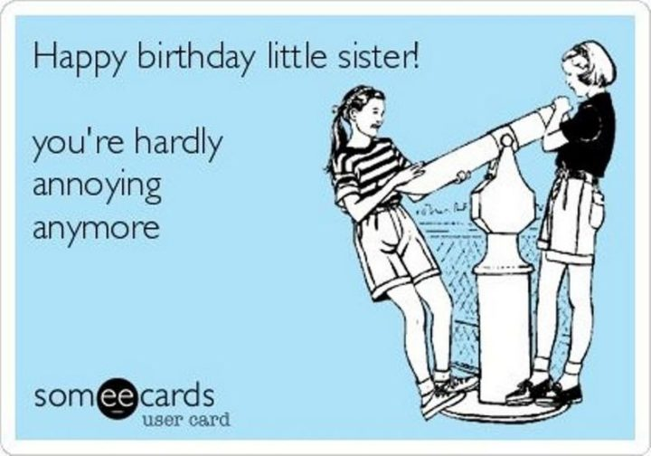 "91 Sister Birthday Memes - ""Happy birthday little sister! You're hardly annoying anymore."""