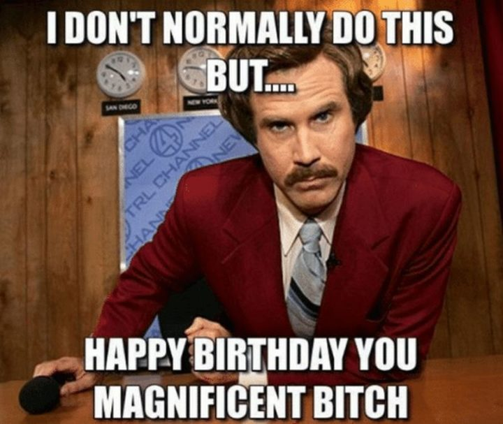 "91 Sister Birthday Memes - ""I don't normally do this but happy birthday you magnificent bitch."""