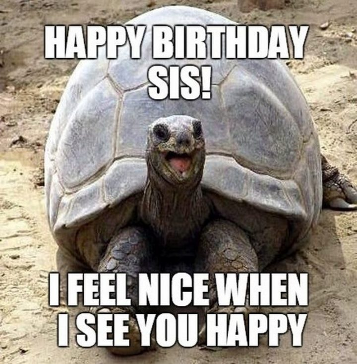 "91 Sister Birthday Memes - ""Happy birthday sis! I feel nice when I see you happy."""
