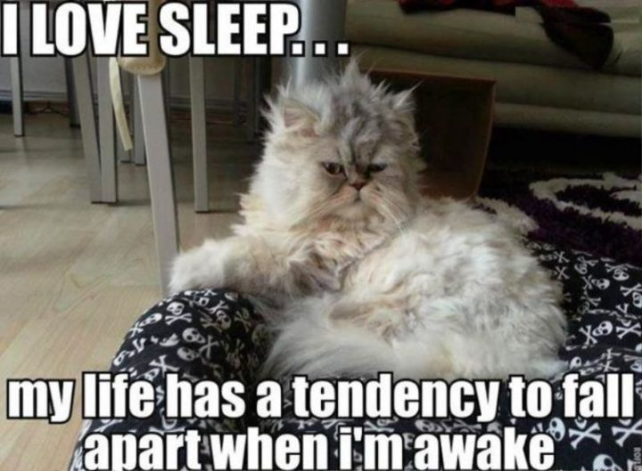 """I love sleep...my life has a tendency to fall apart when I'm awake."""