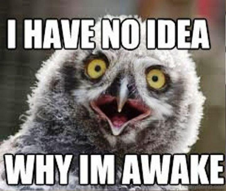 """""""I have no idea why I'm awake."""""""